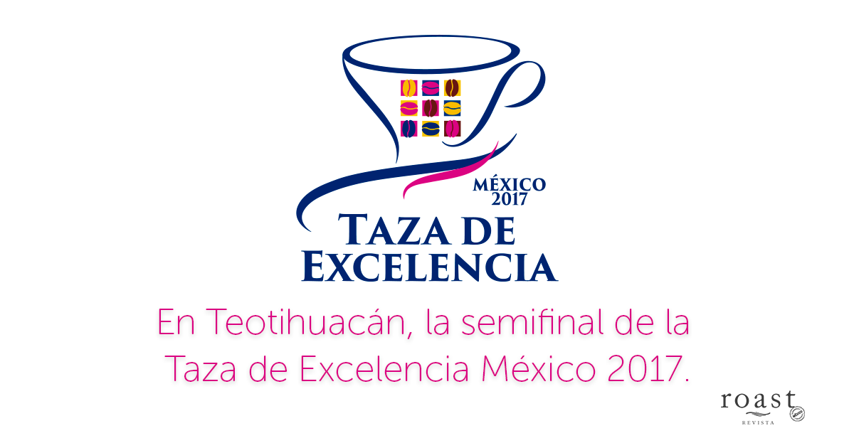 https://www.roastmagazine.com.mx/assets/images/taza_de_excelencia_teotihuacan.png